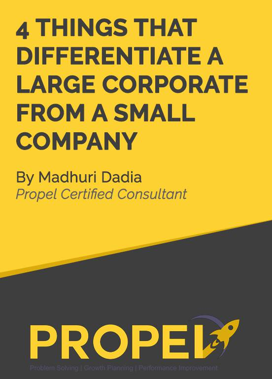 4 Things That Differentiate A Large Corporate From A Small Company